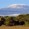 The Top Three Things to do When on Holiday in Tanzania #travel #adventure