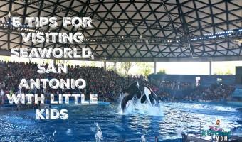 5 tips for visiting SeaWorld San Antonio with little ones #KidsTravelTexas #travel #MoreToSea #FamilyTravel