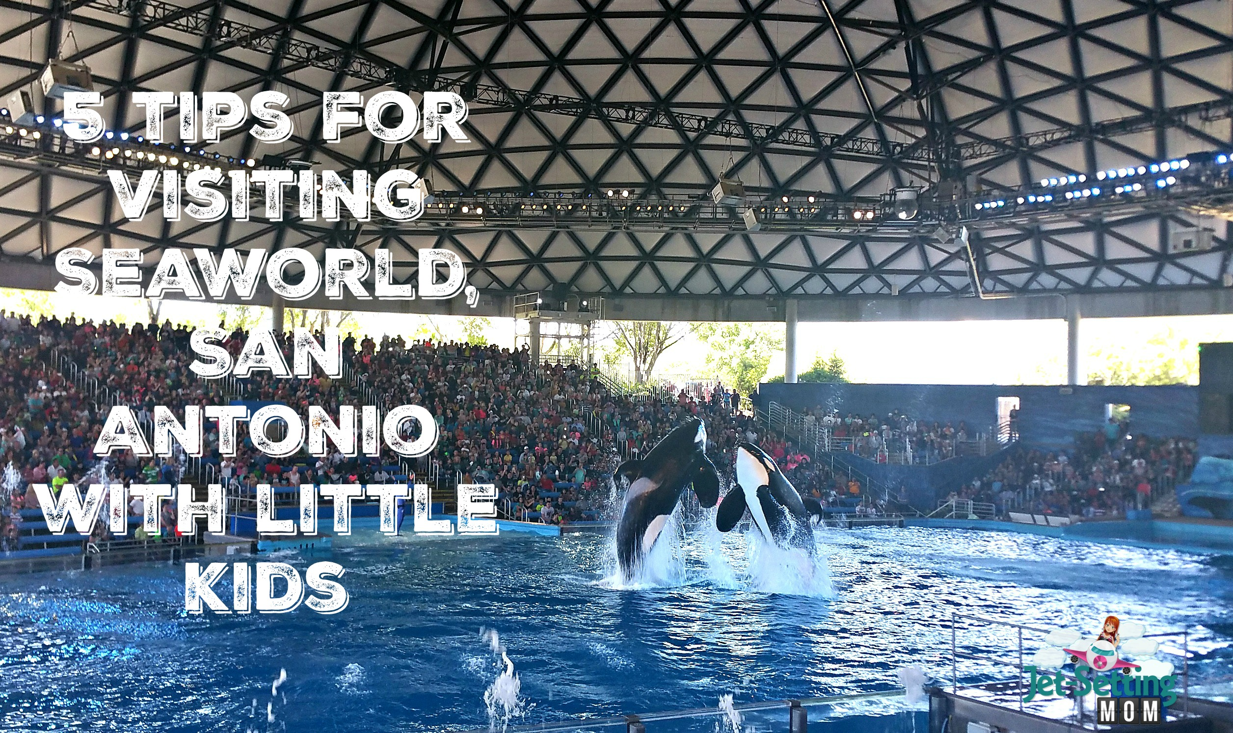 5 tips for visiting SeaWorld, San Anotino With Little Kids